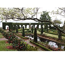 The Italian Garden Photographic Print