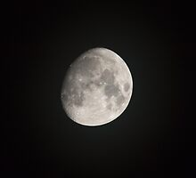 Waxing Gibbous Moon  by Sue Robinson