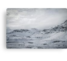Whitescape Canvas Print