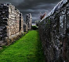 The Old Walls In Fife Scotland, by Forfarlass