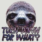 Turn Down For What? Sloth by Matthew Quinn