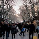 La Ramblas - Barcelona  by rsangsterkelly
