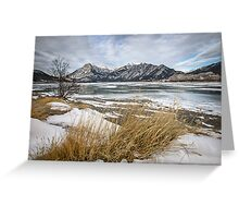 Cold Landscapes Greeting Card