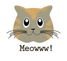 Cute cat meowww Photographic Print