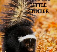 MOMMA'S LITTLE STINKER by NatureGreeting Cards ©ccwri
