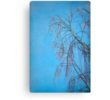 Dream Blue Canvas Print
