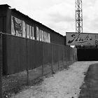 Baseball Field & Bull Durham Sign by Frank Romeo