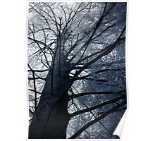 The Tree that Looms over all of us Poster