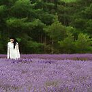 Lost in Lavender by clickedbynic