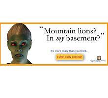 Mountain Lions, in My Basement? by DanceCommander