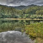Lake Guy, Bogong Village, Victoria by Adrian Paul