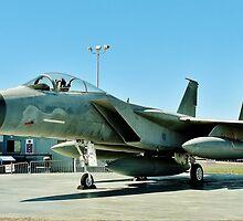 The F-15 Eagle by Martha Sherman