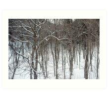 woodland snow scene Art Print