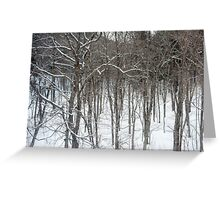 woodland snow scene Greeting Card