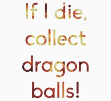 If I die, collect dragon balls! by rav9000