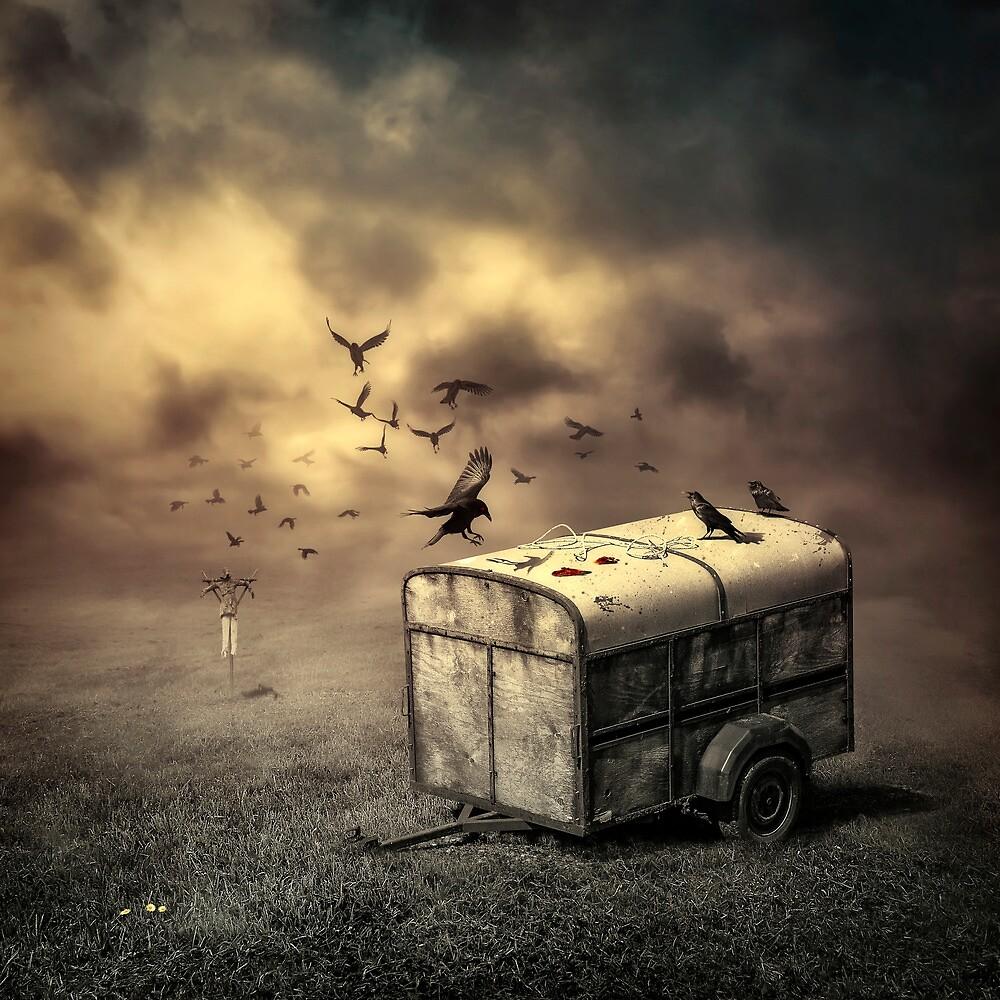 The Bird Table by Svetlana Sewell
