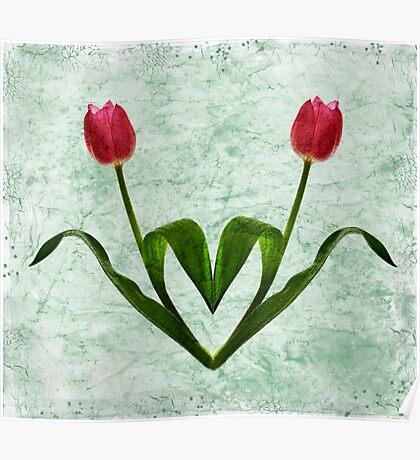 Tulip Heart Poster