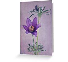 Easter Flower Greeting Card
