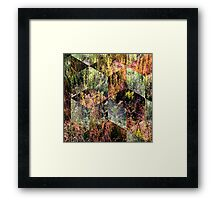 Super Natural No.2 Framed Print