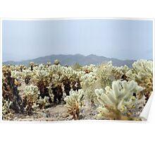 Cactus Garden landscape Poster