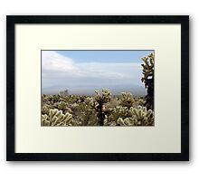 Cholla Cactus Garden Vista Framed Print