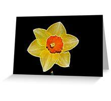 Fractalius Daffodil Greeting Card