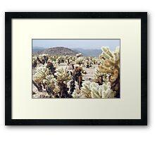 Cactus Garden Details Framed Print