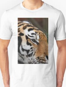 Tiger head close up T-Shirt