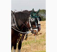 Shire horses Unisex T-Shirt