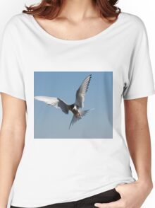 Arctic tern Women's Relaxed Fit T-Shirt