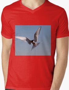 Arctic tern Mens V-Neck T-Shirt