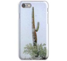 Arizona Snow Storm iPhone Case/Skin