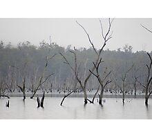 lifeless landscape Photographic Print