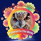 Featured in the Birds Banner by TJ Baccari Photography