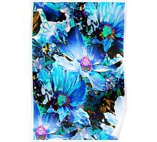 Blue Dahlias Poster