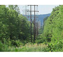 Powered Nature Photographic Print