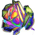 Splendiferous rose design by ♥⊱ B. Randi Bailey