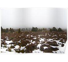 central highlands landscape Poster