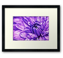 Purple Abstract Flower Framed Print