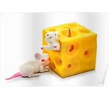 Mice on Cheese Poster