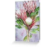 Proteas Greeting Card