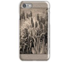 old timey tulips iPhone Case/Skin