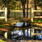 Pond and Bridge by imagetj