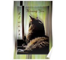 Feline Missing You Always Poster