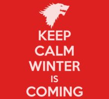 KEEP CALM WINTER IS COMING by james0scott