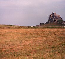 Lindisferne Castle by hmartinphotos