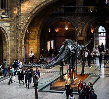 Dinosaur by timkouroff