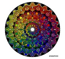Mandala 46 T-Shirts, Hoodies and Stickers and cases - Jim Gogarty Photographic Print