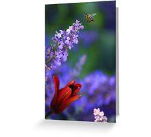 Do Bee Do Bee Do  Greeting Card
