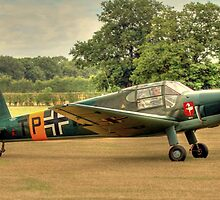 Bücker Bü 181 by larry flewers